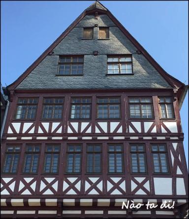 timberhouse2