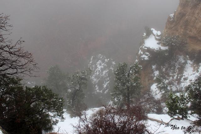 canyon7